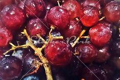 Fresh Red Grapes | Photo | StockerPark