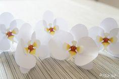 DIY paper orchid - DIY Coletivo: orquídeas de papel