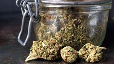 Find the best cannabis seeds at the Sensi Seeds cannabis seed bank. World-class, award-winning cannabis strains - straight from the source. Growing Marijuana Indoor, Marijuana Plants, Cannabis Growing, Cannabis Vape, Cannabis Seeds For Sale, Medical Marijuana, Ganja, Weed Strains, Indica Strains