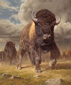 buffalo - Dustin Van Wechel, Headstrong, oil on linen, 48 x 40 in. / Art of the West at the Autry gallery and museum in Los Angeles