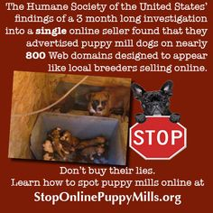 If people really knew how their puppy was raised, they would never support this. Learn to spot puppy mill lies at http://www.stoponlinepuppymills.org/dont-buy-the-lie-2/