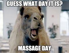 25 Massage Memes For Massage Enthusiasts Funny Massage Quotes, Massage Funny, Love Massage, Massage Place, Getting A Massage, Prenatal Massage, Thai Massage, Acupuncture, Les Muscles Endoloris