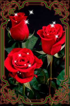 Corazones Gif, Beautiful Gif, Rose Wallpaper, Belle Photo, Tattoo Designs, Plants, Pictures, Mornings, Beautiful Images