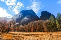 Beautiful Morning in Yosemite Valley