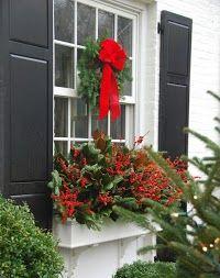 Christmas Trees - Favorite Photoz