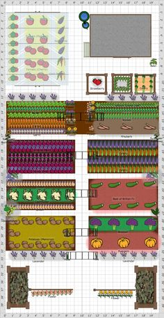 Garden Plan - 2015: Allotment, fantastic allotment (community garden plan) with a shed, greenhouse and water butt, really productive plan and beautifully organised.