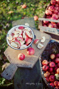 ❧ Pommes ❧