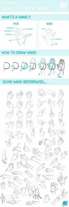 Hands drawing refrence