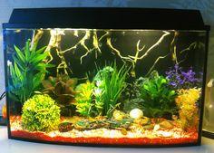 Услуга laquo;подключение под ключraquo; включает в себя:  Доставку аквариума до места размещения Правильная установка аквариума на место Подбор декораций Оф