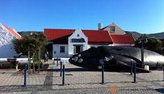 Make the most of your trip to the whale coast of Southern Africa and explore one of the museums where the history will come alive in the artifacts on display. Shipwreck Museum, Narrow Staircase, Maritime Museum, Seven Wonders, Adventure Activities, Seaside Towns, Whale Watching, Fishing Boats, Historical Photos