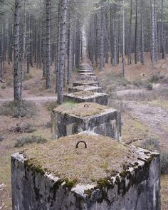 The last stand: Eerie photos capture man-made coastal remnants of Concrete tank defences in the forests near Lossiemouth, Moray - photos capture man-made remnants of the Second World War that have become part of our coastal landscape Abandoned Buildings, Abandoned Places, Abandoned Homes, Last Stand, Foto Art, Fortification, Land Art, Military History, Belle Photo