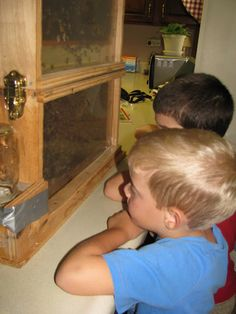 Creepy Crawlies: Fun with Insects from Homeschool Share