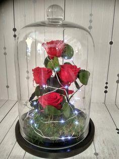 Αποχυμωμένα τριαντάφυλλα μακράς διάρκειας Forever Rose, Glass Vase, Roses, Home Decor, Decoration Home, Pink, Room Decor, Rose, Home Interior Design