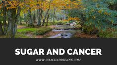 There's lots of speculation out there about sugar and its relationship with cancer. Some studies show a correlation in sugar consumption and increased tumor growth, while other studies say this...