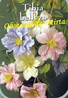 Porcelana Fria 37 - Lilicka Amancio - Web-albumi Picasa