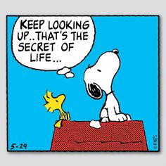 """Keep looking up... That's the secret of life..."""