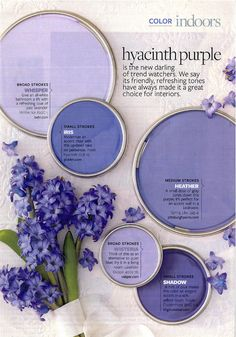 Hyacinth Purple Paint Color Palette Hyacinth Purple Paint Color Palette Kristin Chernov Home decor Hyacinth Purple Paint Color Palette Paint Colors Used Behr Whisper nbsp hellip Painting colors Purple Paint Colors, Paint Colors For Home, Wall Colors, House Colors, Purple Painting, Purple Walls, Purple Wall Paint, Purple Rooms, Spa Colors