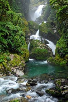New Zealand's most famous hiking trail, the Milford Track.  I learned about if from cousin Leonie.