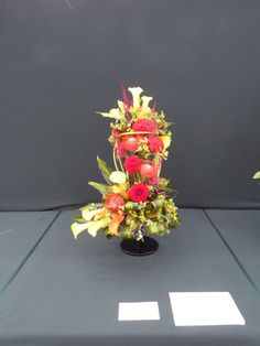 Excultation - I get 3 third place of 8 in Southport flower show 2014