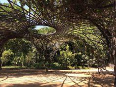 Visiting the Botanical Garden of Culiacán - DESIGNAHOLIC Natural Structures, Garden Structures, Tropical Landscaping, Outdoor Landscaping, Pergola, Pavillion Design, Singapore Garden, Bamboo Structure, Public Space Design