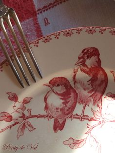 <3 birds