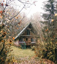 cabin in the woods...                                                                                                                                                                                 More