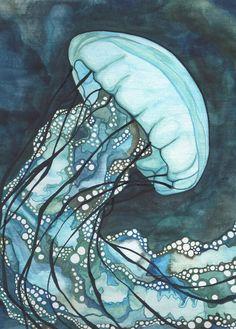 Ortica di Aqua mare Medusa 5 x 7 stampa di opere d