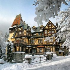 Find images and videos about beautiful, photography and vintage on We Heart It - the app to get lost in what you love. Beautiful Castles, Beautiful Buildings, Beautiful Homes, Beautiful Places, Vacation Places, Places To Travel, Places To Visit, Brasov Romania, Peles Castle