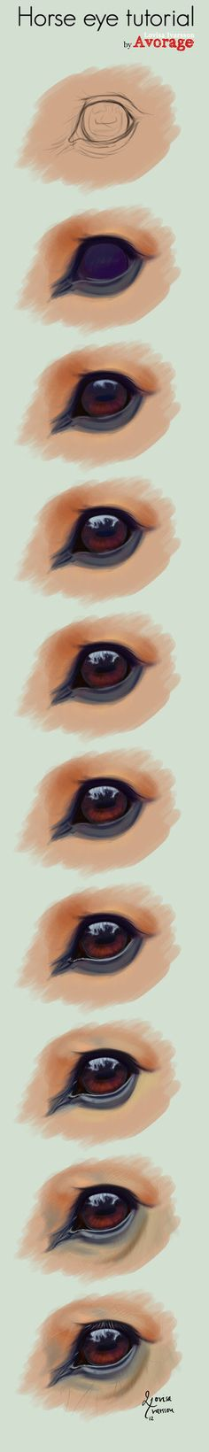 horse drawing tutorial horse eye. //No instructions on this, go by sight EL//