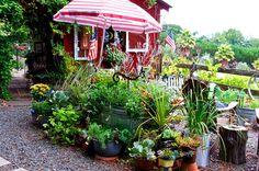 BBY 2014 - Dennis' garden