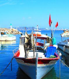 Le port de la Madrague de Montredon, Marseille