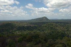 #suriname #mountain #bigblogmap #southamerica