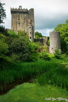Blarney Castle..  The present Blarney Castle is the third castle to be builton the site. The first, in the 10th century, was wooden.About 1210, this was replaced by a stone structure. In 1446, another stone structure was built by Cormac MacCarthy giving today's castle.