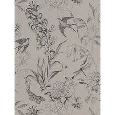 Buy Designers Guild Jardin des Plantes Sibylla Paste the Wall Wallpaper Online…