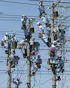 Awesome collection of funny pictures, funny animals and hilarious pictures Some images are captured in such a way that it will make you laugh. Electrical Projects, Electrical Engineering, Electrical Wiring, Funny Images, Funny Photos, Big Indoor Plants, Mood Images, Its A Mans World, Lineman
