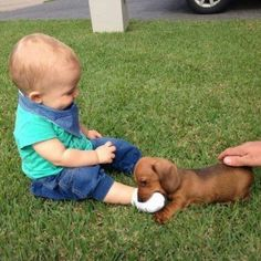 HAHA, HE'S NIBBLING ON HIS LIL FOOT. | 21 Babies Meeting Dogs For The First Time