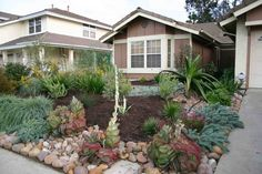 Drought resistant front yard using rocks, bark and plants/shrubs that need little to no water!  California Drought / Sacramento Drought