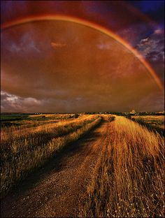 Road to that place Somewhere Over the Rainbow Love Rainbow, Over The Rainbow, Beautiful World, Beautiful Places, Fields Of Gold, Somewhere Over, Felder, Belleza Natural, Rainbow Connection