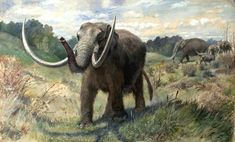 American Mastodon by Charles Robert Knight, 1897.