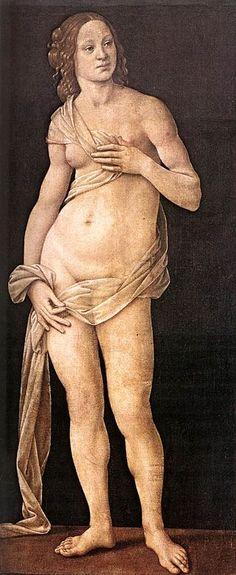 Lorenzo di Credi  - Venere  - 1493-1495 circa - Firenze - Galleria degli Uffizi