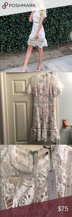 Pledging My Love Lace Dress Gorgeous lace dress, short sleeves and slight flare out at the bottom. Perfect/BNWT condition, no trades Ark & Co Dresses Mini