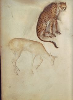From Taccuino di disegni (sketchbook) associated with the Milanese painter, illuminator, sculptor and architect Giovannino de' Grassi (d. 1398).