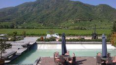 Viña Montes wines, Apalta Chile