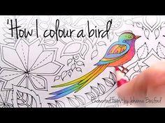 How I colour a bird (blending colours); Enchanted Forest - Johanna Basford - YouTube