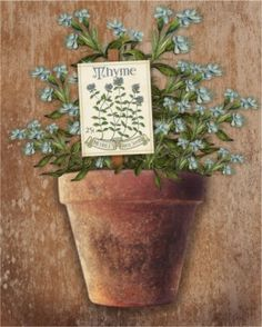 Potted Herbs I (Kate Ward Thacker)
