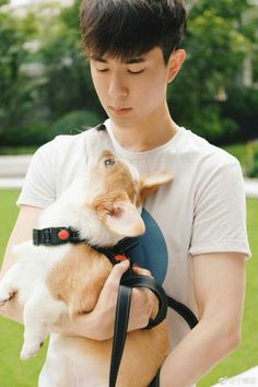 Chinese Man, China, Lunges, Cute Boys, Actors, Animals, Beautiful, Celebrity, Idol