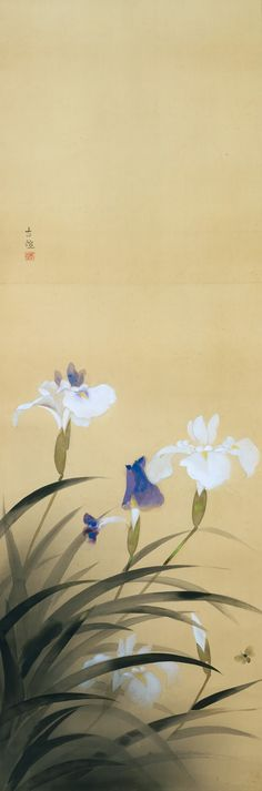 Japanese Prints Iris Laevigata / & ca Kobayashi Kokei / & Japanese - Japanese Ink Painting, Japanese Drawings, Japan Painting, Japanese Prints, Chinese Painting, Chinese Art, Watercolor Inspiration, Art Japonais, Japanese Flowers