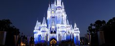 Add even more magic to your visit with this unique experience at Walt Disney World.
