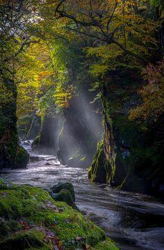 Fairy Glen (Conwy, Wales) by Tony Mearman