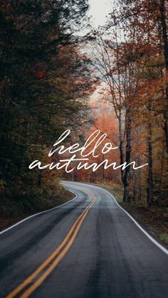 Wallpaper # 7 Hello Autumn, Source by Cute Fall Wallpaper, Pretty Phone Wallpaper, Iphone Wallpaper Fall, Halloween Wallpaper Iphone, Iphone Wallpapers, Dope Wallpapers, Aesthetic Wallpapers, Free Wallpaper Backgrounds, Of Wallpaper